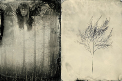 collodion-humide-photographie